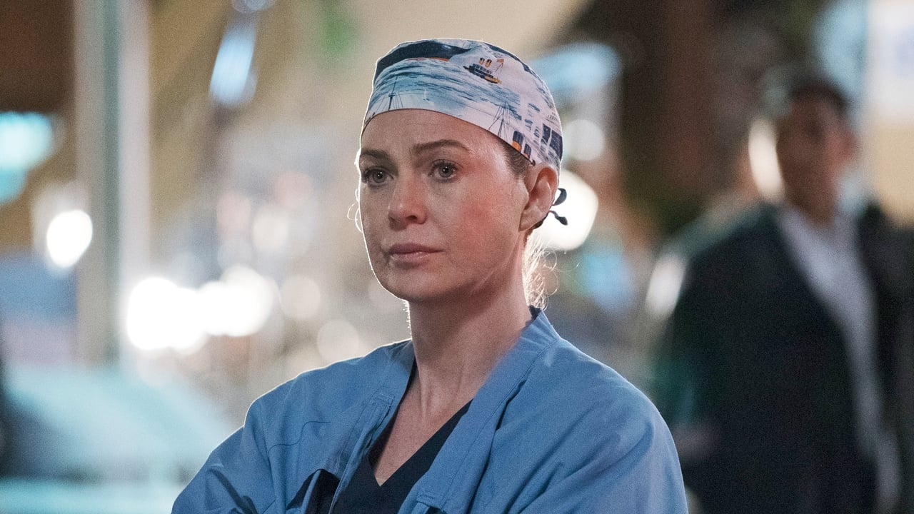 Grey's Anatomy - Season 13 Episode 24 : Ring of Fire