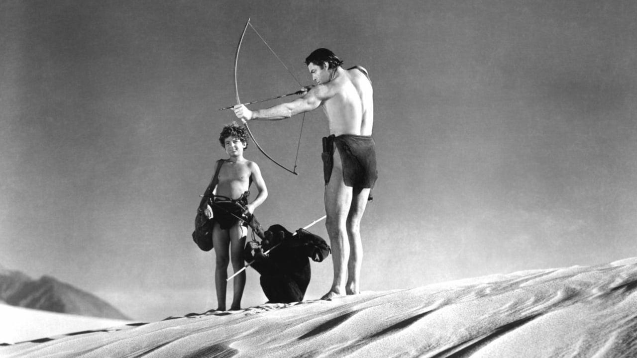 Tarzan's Desert Mystery 4