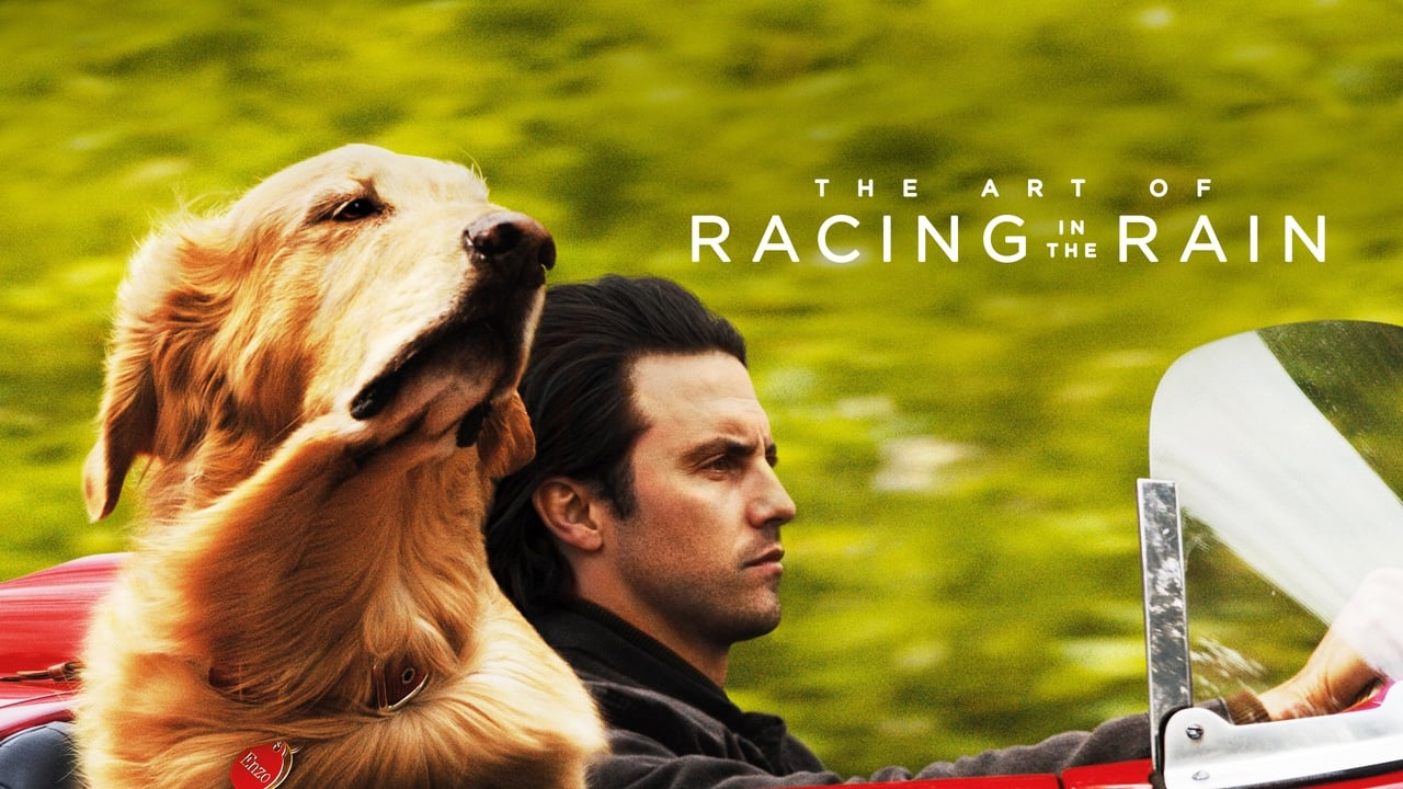 The Art of Racing in the Rain 5