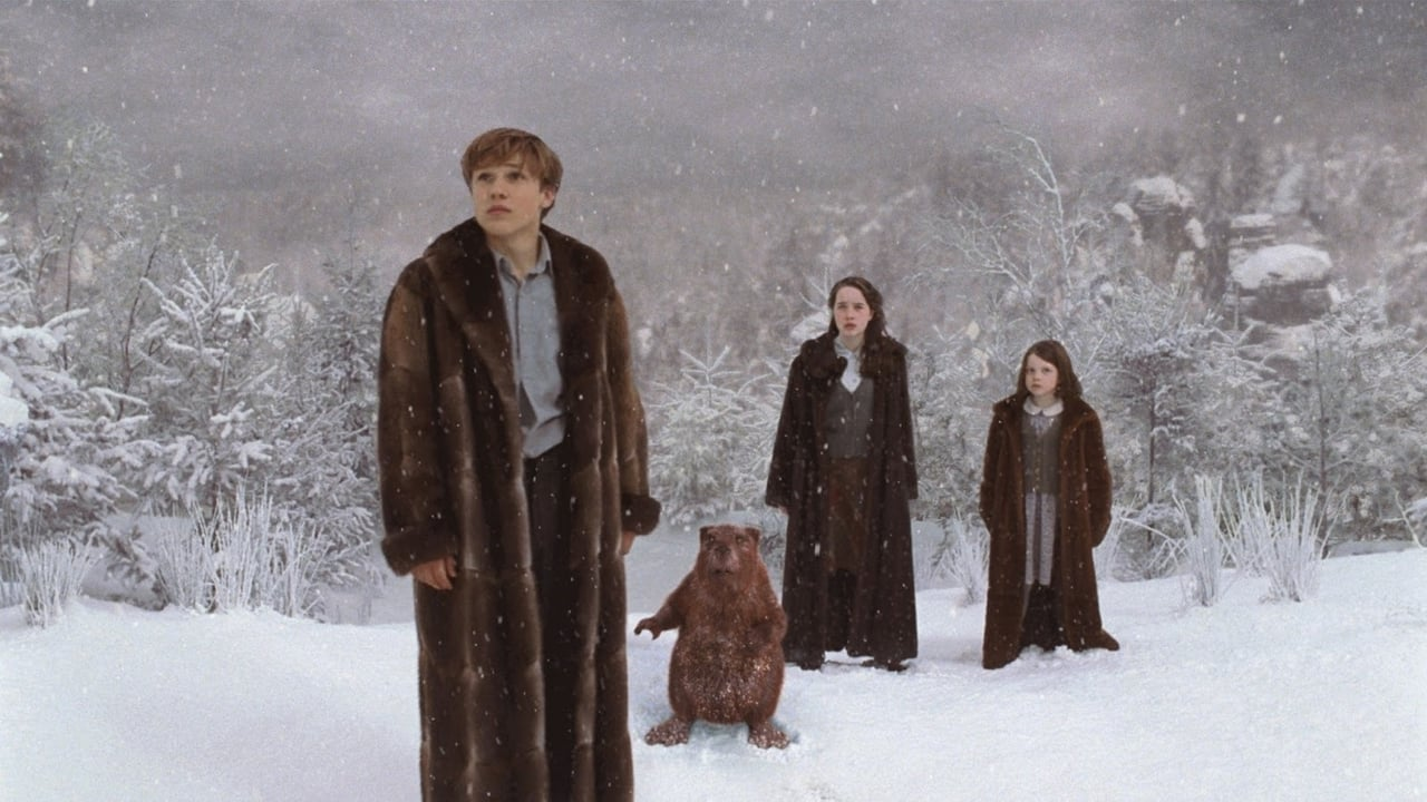 The Chronicles of Narnia: The Lion, the Witch and the Wardrobe 5