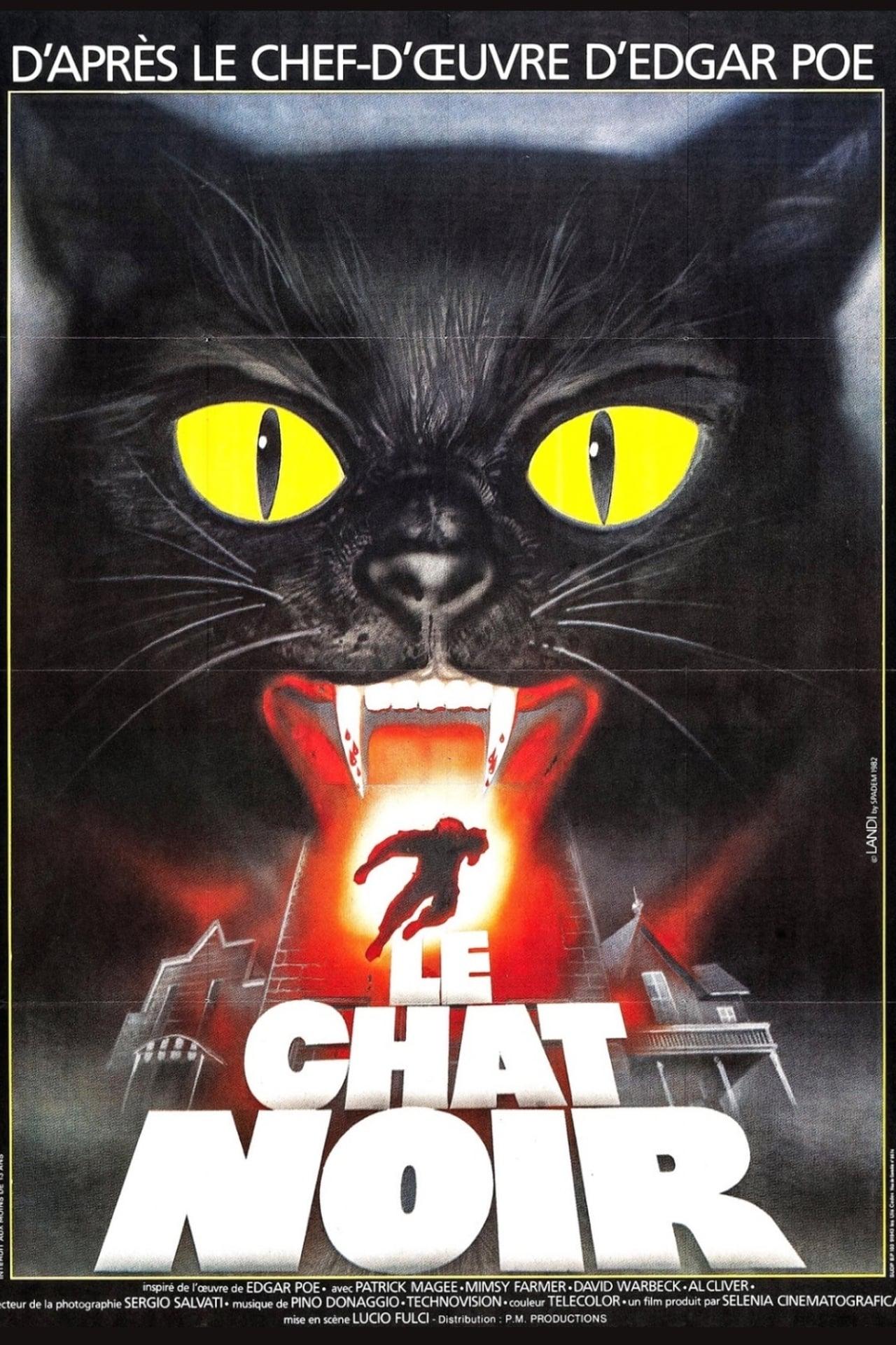 Black Cat  Opensubtitles