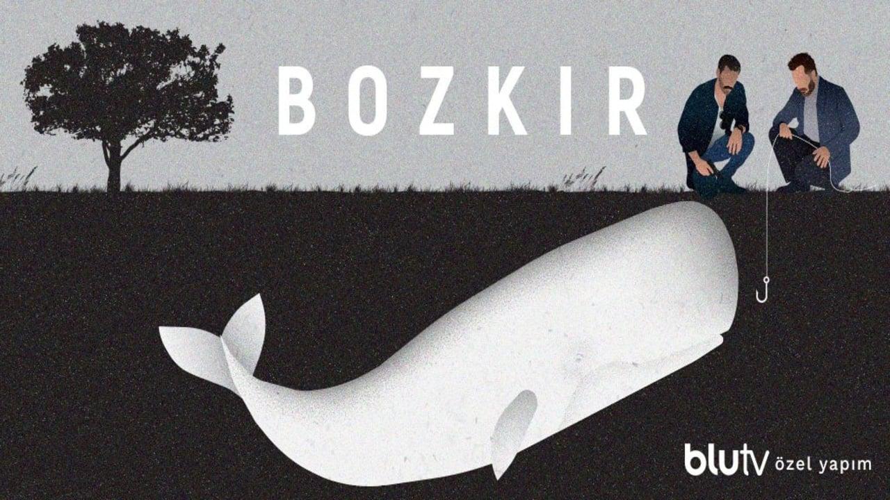 cover-Bozkir (Steppe)