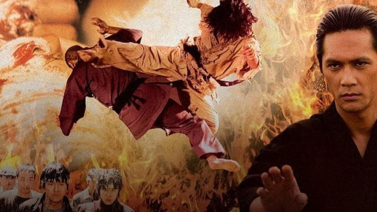 Fighter in the Wind (2004) Film Online Subtitrat