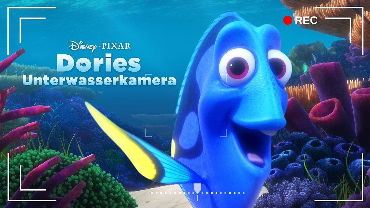 Dory's Reef Cam 1