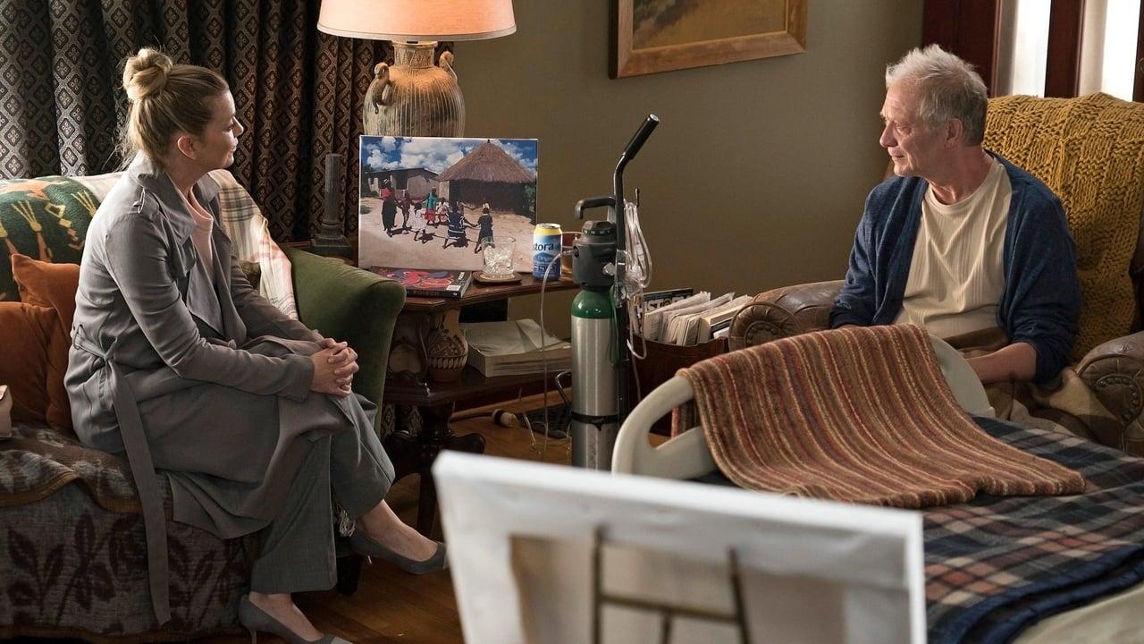 Grey's Anatomy - Season 15 Episode 11 : The Winner Takes It All