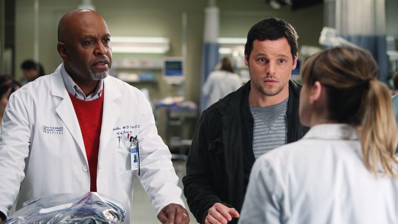 Grey's Anatomy - Season 7 Episode 15 : Golden Hour
