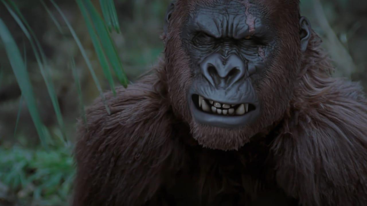 Wild King (2020)