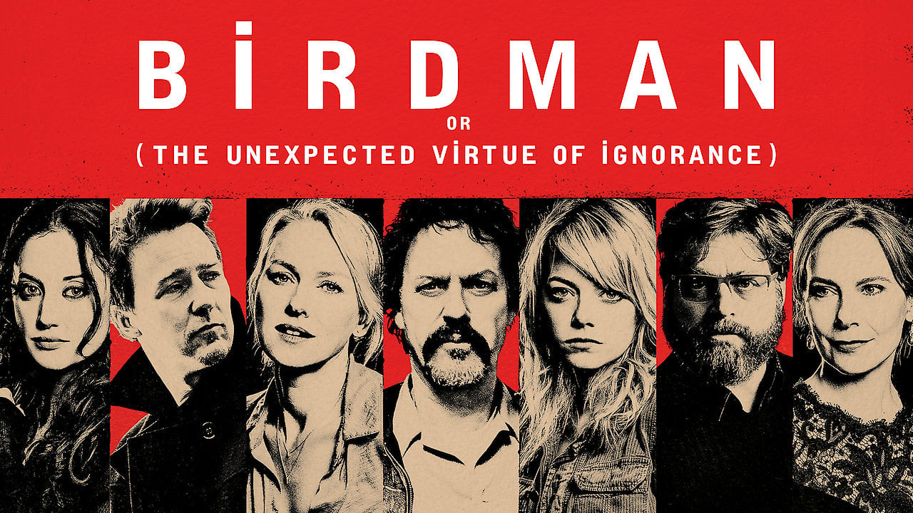 Birdman or (The Unexpected Virtue of Ignorance) 5