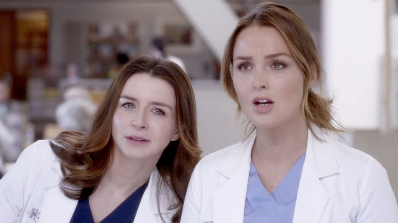 Grey's Anatomy - Season 8 Episode 11 : This Magic Moment