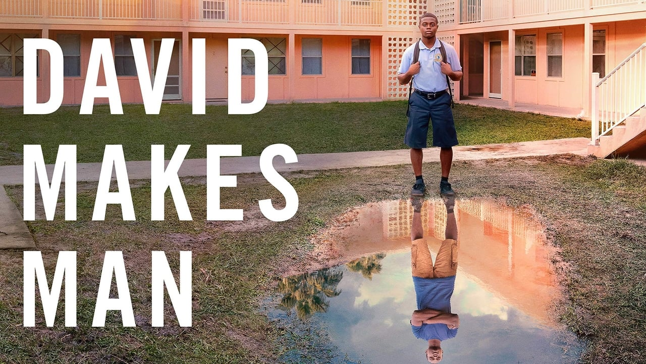 David Makes Man Season 1