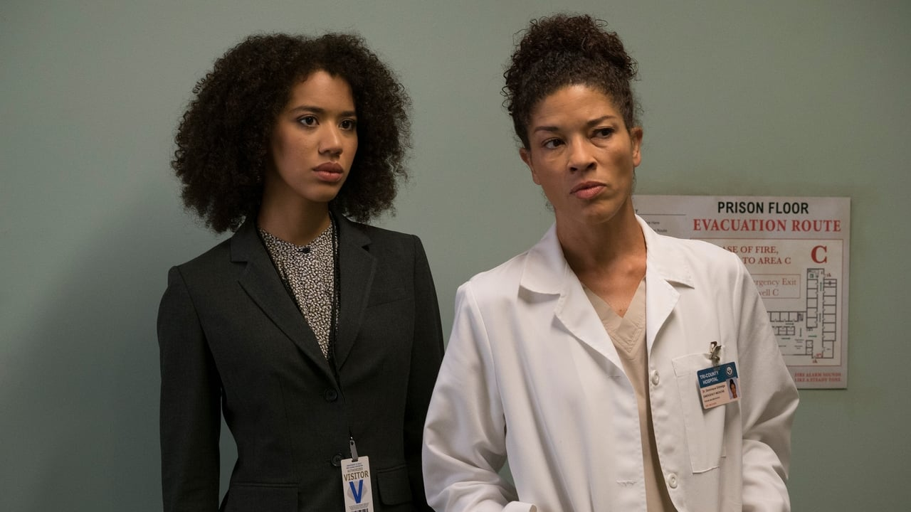 Grey's Anatomy - Season 13 Episode 10 : You Can Look (But You'd Better Not Touch)