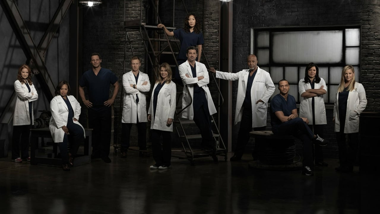 Grey's Anatomy - Season 11 Episode 23 : Time Stops