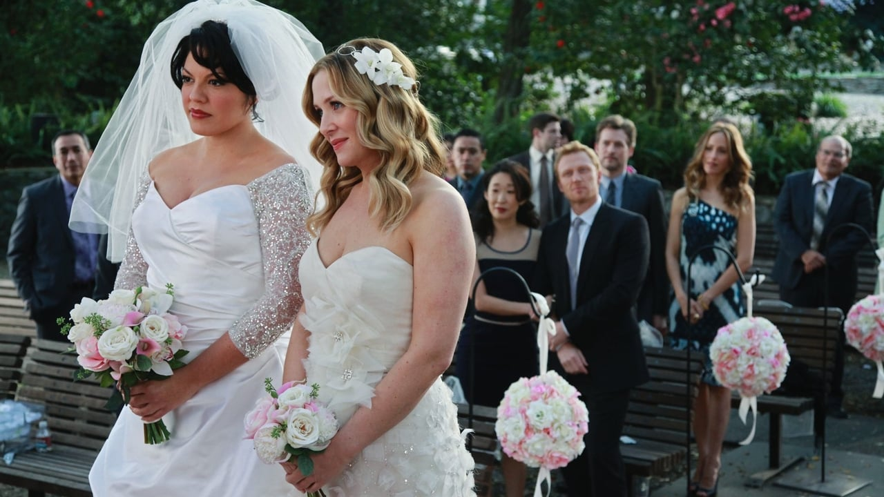 Grey's Anatomy - Season 7 Episode 20 : White Wedding