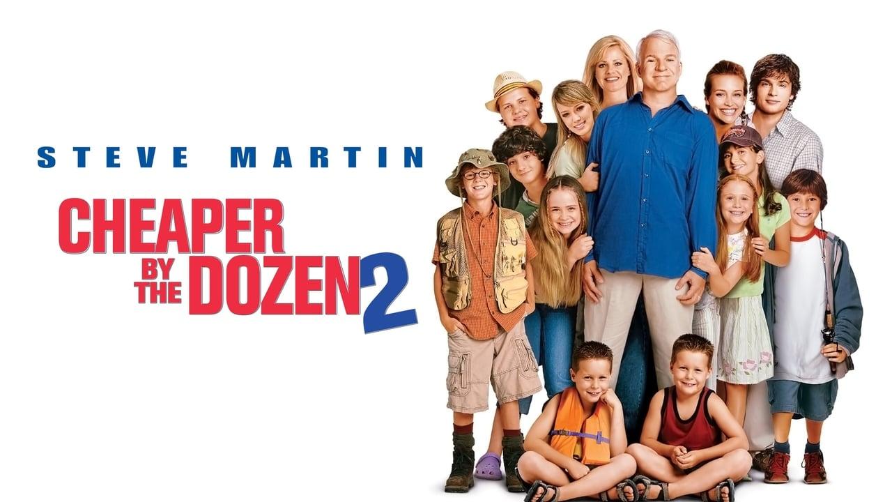Cheaper by the Dozen 2 4
