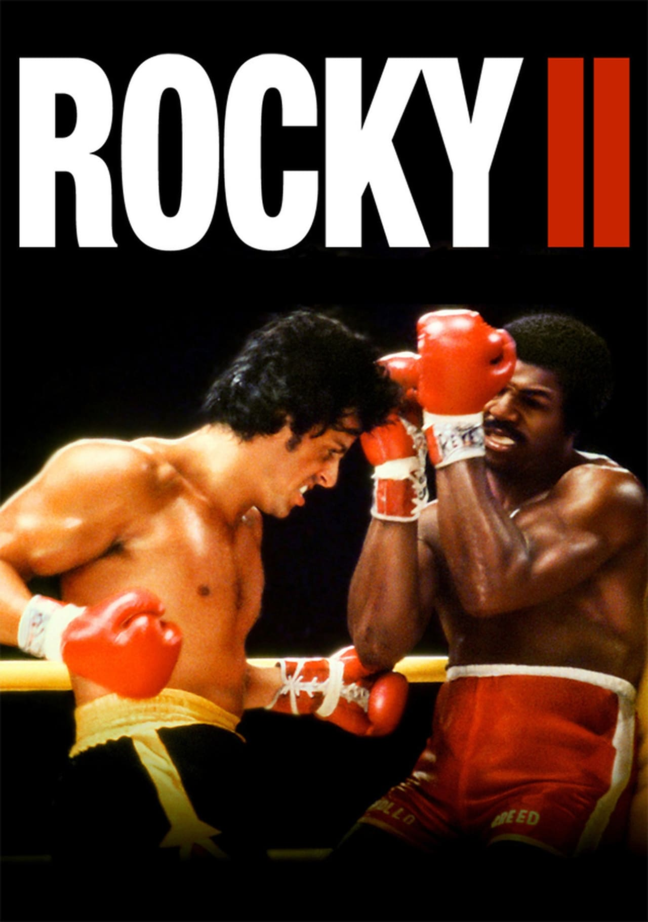 Rocky 2 Online