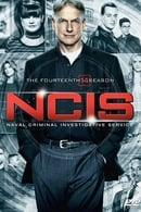 Navy: Investigación criminal Temporada 14