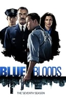 Blue Bloods Season 8