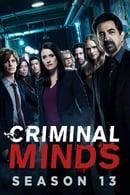 Esprits criminels Saison 13