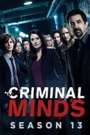Criminal Minds Season 13 Episode 17