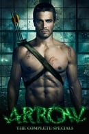 Arrow Temporada 0