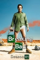 Breaking Bad (S1/E5): Vivre ou survivre