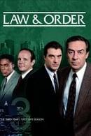 La ley y el orden Temporada 3