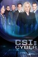 CSI: Cyber Temporada 1
