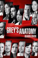 Anatomía de Grey Temporada 7