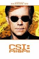 CSI: Miami Temporada 5