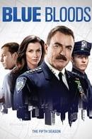 Blue Bloods (Familia de policías) Temporada 5