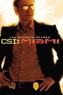 CSI: Miami Temporada 7