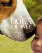 Filmomslag A Dog's Journey