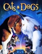 Filmomslag Cats & Dogs