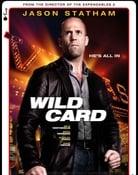 Filmomslag Wild Card