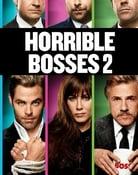 Filmomslag Horrible Bosses 2