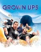 Filmomslag Grown Ups