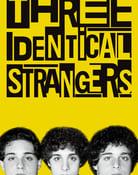 Filmomslag Three Identical Strangers