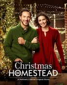 Filmomslag Christmas in Homestead