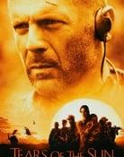 Filmomslag Tears of the Sun