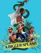 Filmomslag A Bigger Splash