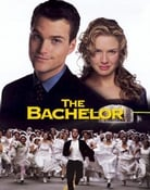 Filmomslag The Bachelor