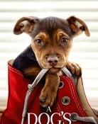 Filmomslag A Dog's Way Home