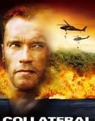 Filmomslag Collateral Damage