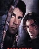 Filmomslag Assassins