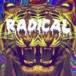 MrRadical