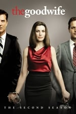 Watch The Good Wife Season 2 Online Free on Watch32