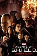 Marvel's Agents of S.H.I.E.L.D. Season 4 movietube