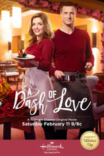 A Dash of Love Netflix TV