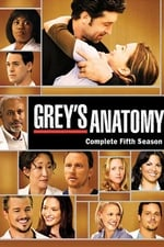 Grey's Anatomy Season 5 watch32 movies