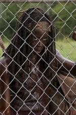 The Walking Dead Season 3 Episode 7